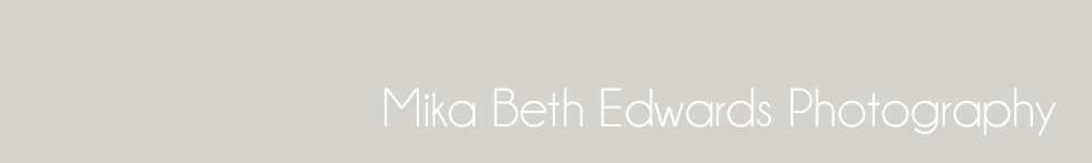 mika beth edwards photography blog logo